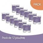 Pack 12  Poudres Décolorante sans ammoniaque Subtil Blond 450 Grs