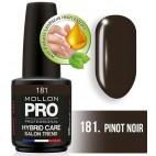 Semipermanenter Lack Hybrid Shine Mollon Pro 12ML Pinot Noir - 181