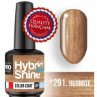 Mini Vernis Semi-Permanent Hybrid Shine Mollon Pro 8ml N°291