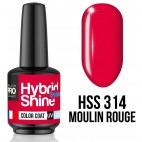 Mini Semi-Permanent Polish Shine Mollon Pro 8ML n ° 303