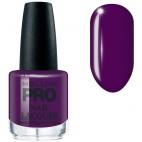 Barniz clásico n ° 319 Duquesa púrpura MOLLON PRO 15ML