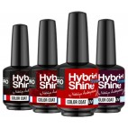 Red Passion mini Hybrid Shine Collection