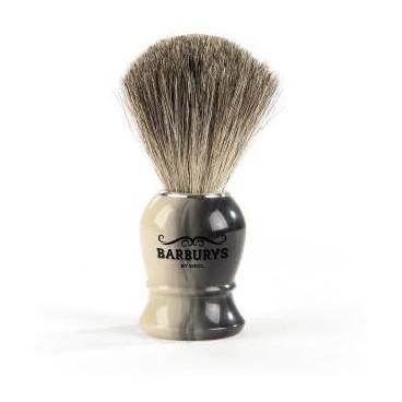 Blaireau Barburys horn 0002320