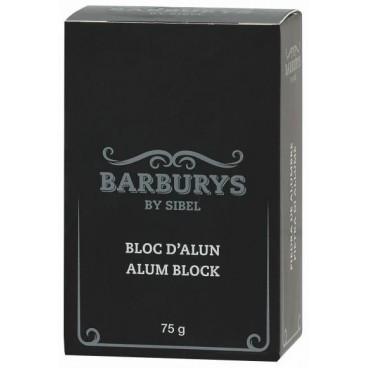 Bloc d'Alun Baburys 75g