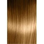 8.3 Blond clair doré