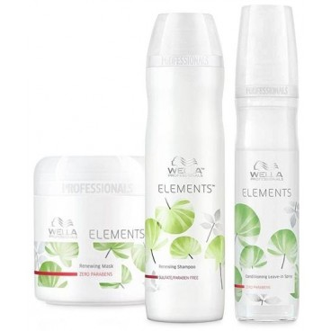 Pack Shampoo + Mask + Spray Care Element