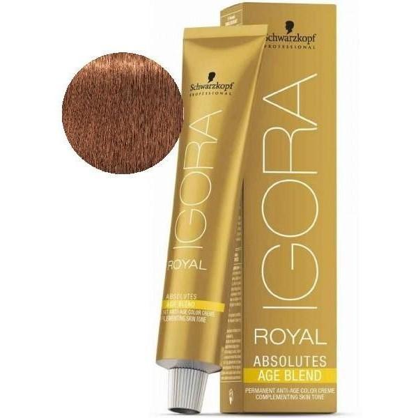 Igora Royal Absolutes Age Blend 7-710 Blond Moyen Cuivré Cendré