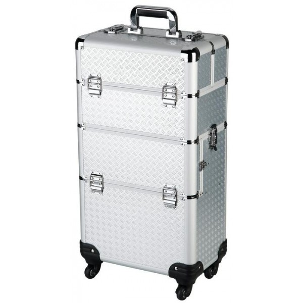 Suitcase Aesthetic 3 compartments on Roulette