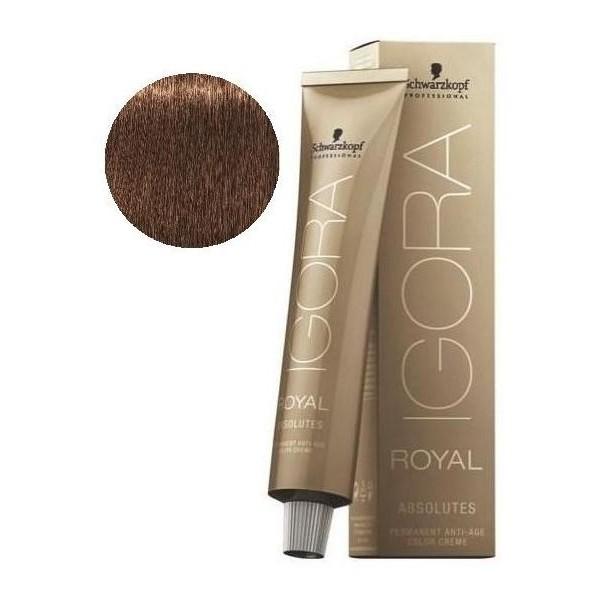 Igora Royal Absolutes 6-60 Dark Blonde Brown Natural 60 ML