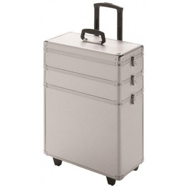 Valise Space Silver line