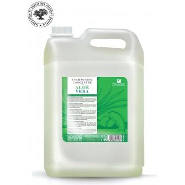 Konzentriertes mildes Shampoo mit Aloe Vera 5L