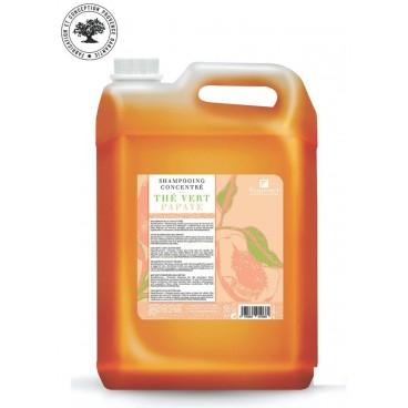 Concentrated shampoo papaya green tea