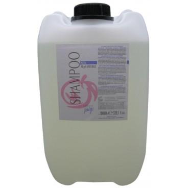 Professional shampoo Artik J / C 10L