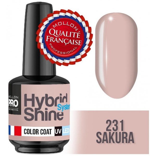 Mini Varnish Semi Permanent Hybrid Shine Mollon Pro