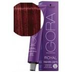 Igora Royal Fashion Luz N ° L-88 Rojo adicional 60 ML