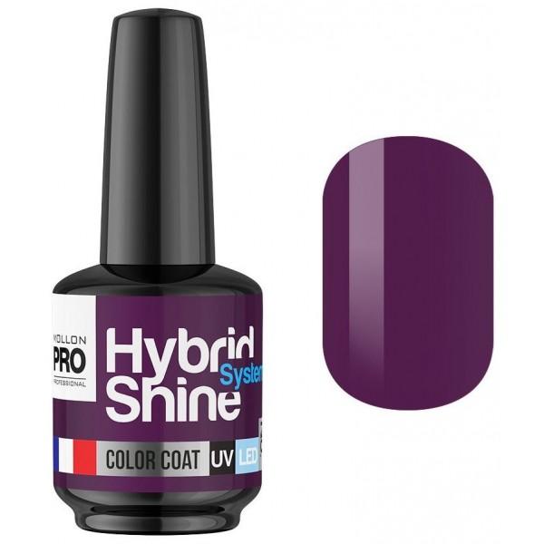 Semi-Permanent Mini Varnish Hybrid Shine Mollon Pro 8ml Plum 2/08