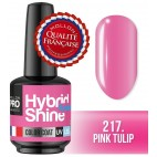 Mini Vernis Semi-Permanent Hybrid Shine Mollon Pro 8ml 217