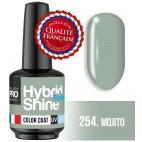 Mini Vernis Semi-Permanent Hybrid Shine Mollon Pro 254 Mojito 8 ml