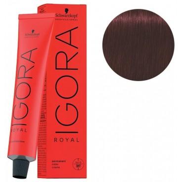 Igora Royal 4-88 de color rojo castaño extra 60 ML