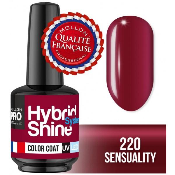 Mini lacca semi-permanente ibrida Shine Mollon Pro 8ml 220